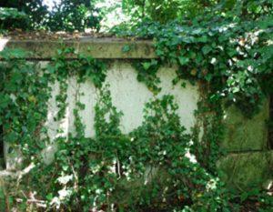 Grave 3 image